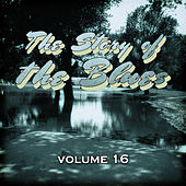 The Story of the Blues, Vol. 16 by Various Artists