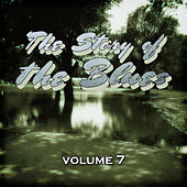 The Story of the Blues, Vol. 7 by Various Artists