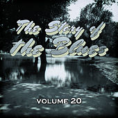 The Story of the Blues, Vol. 20 by Various Artists