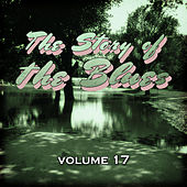 The Story of the Blues, Vol. 17 by Various Artists