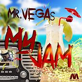 My Jam by Mr. Vegas