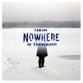 Nowhere or Tammensaari by I Am Oak