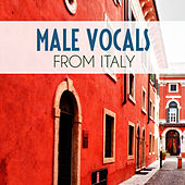 Male Vocals From Italy de Various Artists