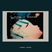 Flesh and Machine de Daniel Lanois