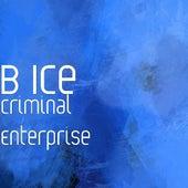 Criminal Enterprise von B Ice