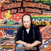Sonidos Romanticos de la Cumbia de Various Artists