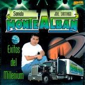 Exitos Del Millenium de Various Artists