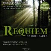 Fauré: Requiem by The Bach Choir