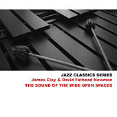 Jazz Classics Series: The Sound of the Wide Open Spaces de David 'Fathead' Newman