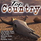 Top Country by Various Artists