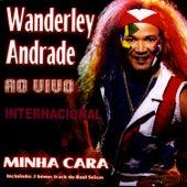 Minha Cara / Internacional - Ao Vivo de Wanderley Andrade