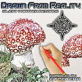 Drawn From Reality by Various Artists