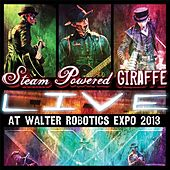 Live at Walter Robotics Expo 2013 by Steam Powered Giraffe