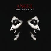 Ángel de Mercedes Sosa