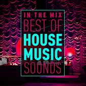 In the Mix: Best of House Music Sounds von Various Artists