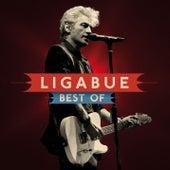 The Best Of (International Standard Edition) by Ligabue