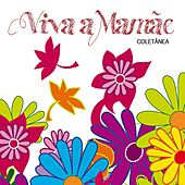 Viva a Mamãe (Coletânea) de Various Artists
