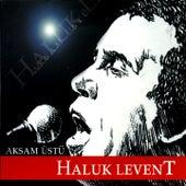 Akşam Üstü by Haluk Levent