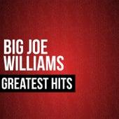 Big Joe Williams Greatest Hits de Big Joe Williams