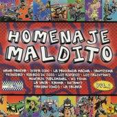 Homenaje Maldito, Vol. 2 by Various Artists