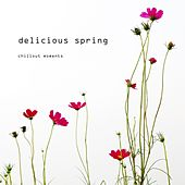 Delicious Spring - Chillout Moments by Various Artists