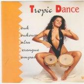 Tropic Dance (Zouk, Soukouss, Salsa, Merengué, Compa) de Various Artists