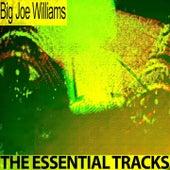 The Essential Tracks (Remastered) de Big Joe Williams