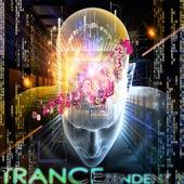 Trance Zendenz, Vol. 1 (A Progressive and Melodic Trance Sensation) von Various Artists