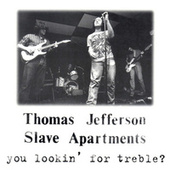 You Lookin' For Treble? by Thomas Jefferson Slave Apartments