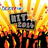 Hit 2014 by Various Artists
