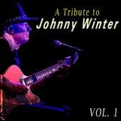 A Tribute to Johnny Winter, Vol. 1 de Johnny Winter