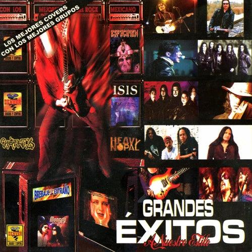 Grandes Éxitos a Nuestro Estilo, Vol. 1 by Various Artists