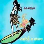Catch a Wave (Surfin´Sounds) de Various Artists