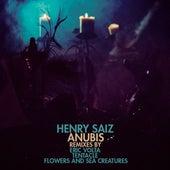 Anubis by Henry Saiz