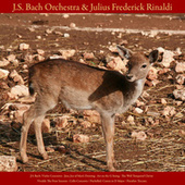 J.S. Bach: Violin Concerto; Jesu, Joy of Man's Desiring; Air On the G String; the Well - Tempered Clavier - Vivaldi: the Four Seasons; Cello Concerto - Pachelbel: Canon in D Major - Paradisi: Toccata - Vol. VIII de Johann Sebastian Bach