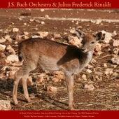 J.S. Bach: Violin Concerto; Jesu, Joy of Man's Desiring; Air On the G String; the Well - Tempered Clavier - Vivaldi: the Four Seasons; Cello Concerto - Pachelbel: Canon in D Major - Paradisi: Toccata - Vol. VIII von Johann Sebastian Bach
