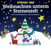 Weihnachten unterm Sternenzelt von Reinhard Horn