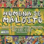 Homenaje Maldito, Vol. 1 by Various Artists