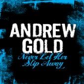 Never Let Her Slip Away de Andrew Gold