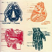 Vena Cava by Down and Above