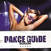 Dance Guide Bigroom by Various Artists