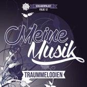 Meine Musik, Folge 12: Traummelodien von Various Artists