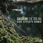 The Dream (Side Effects Remix) de Gaudium