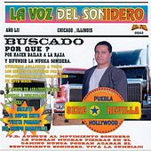 La Voz Del Sonidero (100% Exitos Sonideros) by Various Artists