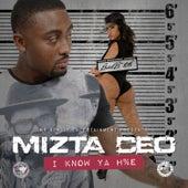 I Know Ya Hoe - Single by Mizta CEO