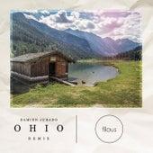 Ohio (Filous Remix) von Damien Jurado