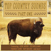 Top Country Sounds Part 1 by Various Artists