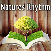 Natures Rhythm by Wildlife Bill
