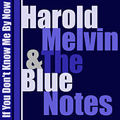 If You Don't Know Me by Now von Harold Melvin and The Blue Notes