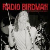 Live at Paddington Town Hall 12th December 1977 di Radio Birdman